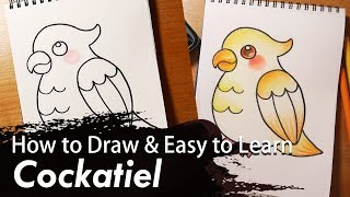 How to Draw & Easy to Learn 01 - Bird | Cockatiel