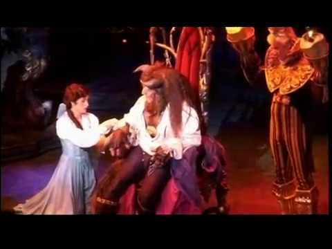 Beauty and the Beast on Broadway  Anneliese van der Pol