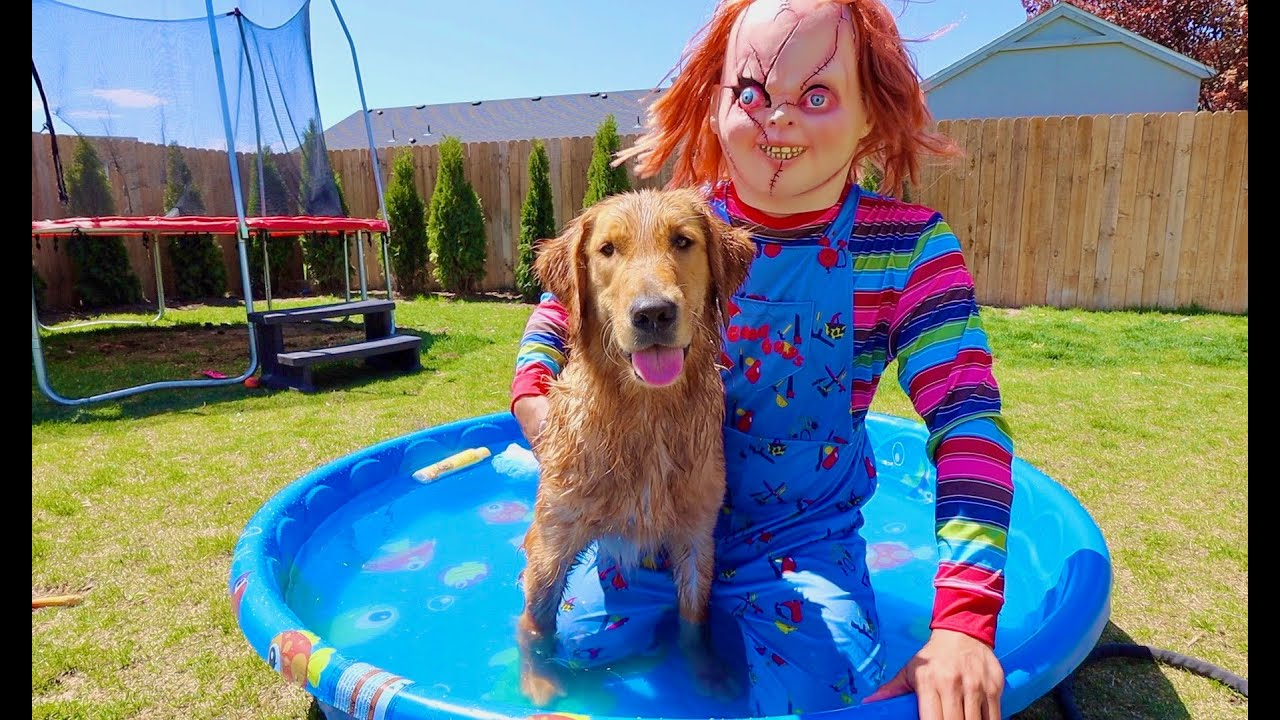 Chucky Surprises Puppy with Bath in Swimming Pool!