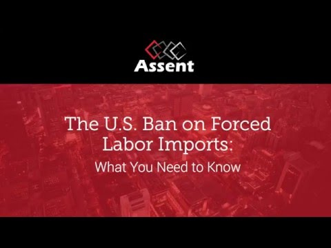 [Webinar] The U.S. Ban on Forced Labor Imports