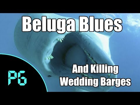 Building a Beluga - and Killing Wedding Barges