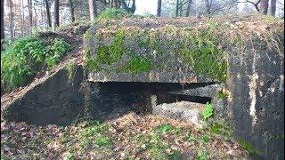 Bunkry z czasów wojny przetrwały do tej pory ukryte w Polskich lasach !!