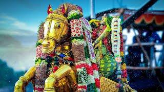 Madurai Chithirai Thiruvizha Kallalagar Vaigaiyatril ElunthuArulal