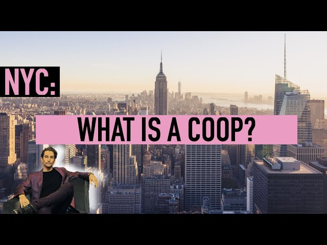 What's a COOP?  | A Minute With Michael #7
