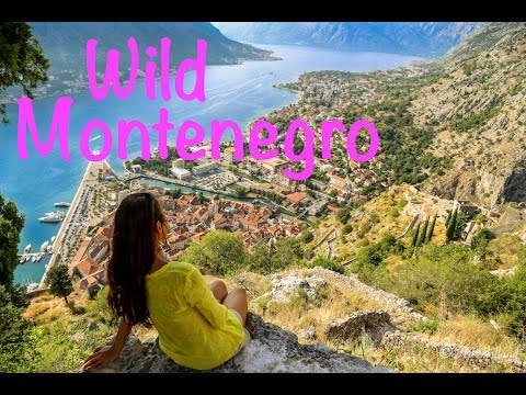 Montenegro Travel Highlights
