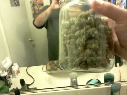 400 watt hps closet grow harvest results & 400 watt hps closet grow harvest results - YouTube