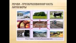 Почвы России урок географии в 8 классе