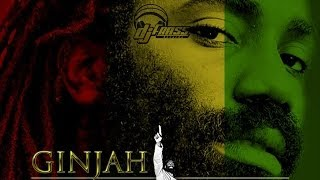 Ginjah - Double Standard [Cane River Riddim] January 2014