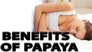 10 Benefits of Papaya for Healthy Skin and Voluminous Hair
