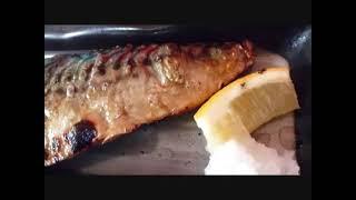 Supreme Grilled Mackerel Set Meal Only 550yen (tottori City Japan)