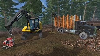 "[""Kenworth"", ""Cat"", ""Forest"", ""Forestry"", ""T800"", ""Logging"", ""Logs"", ""Log"", ""Trees"", ""Hill"", ""Hills"", ""Grass"", ""Mowers"", ""Release"", ""Yay"", ""Log Truck"", ""Processor""]"