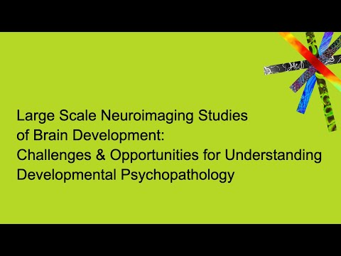 Challenges And Opportunities For Understanding Developmental Psychopathology