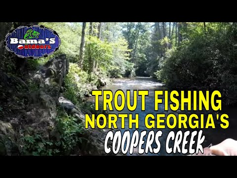 TROUT FISHING NORTH GEORGIA| COOPERS CREEK, SUCHES, GEORGIA