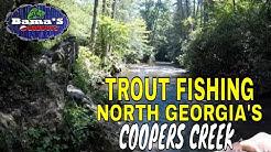 TROUT FISHING NORTH GEORGIA| COOPERS CREEK, SUCHES, GEORGIA