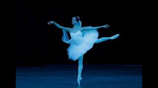First Shade Bayadere Bolshoi Ballet Daria Bochkova