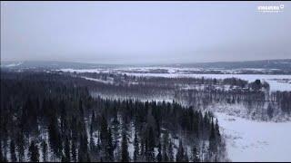 Wyprawa do Laponii 2020, Valerjan Romanovski. Opowieść o drewnie VINGBERG