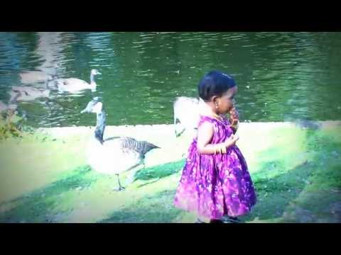 Devathai vamsam neeyo  - 1st Birthday outdoor song