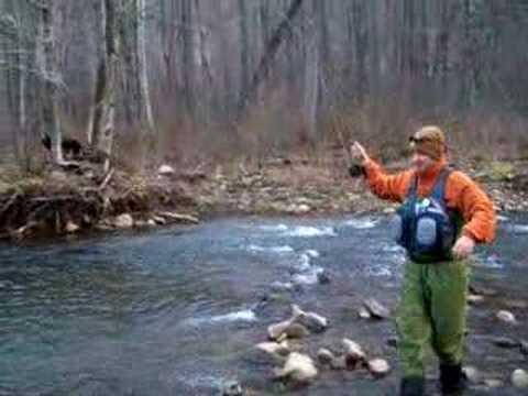 Fly fishing west virginia wild brown trout youtube for West virginia fishing