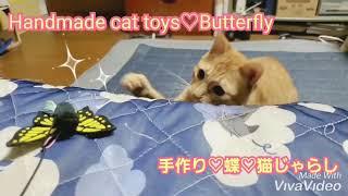 むぎっちゅ☆手作り♡蝶♡猫じゃらし大興奮する猫