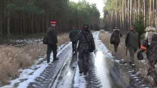 Koło Łowieckie Knieja Góry - Polowanie Dian 8.02.2014 - Polowanie na lisa.