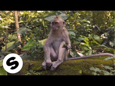 Смотреть клип Bassjackers & Twiig - Memento