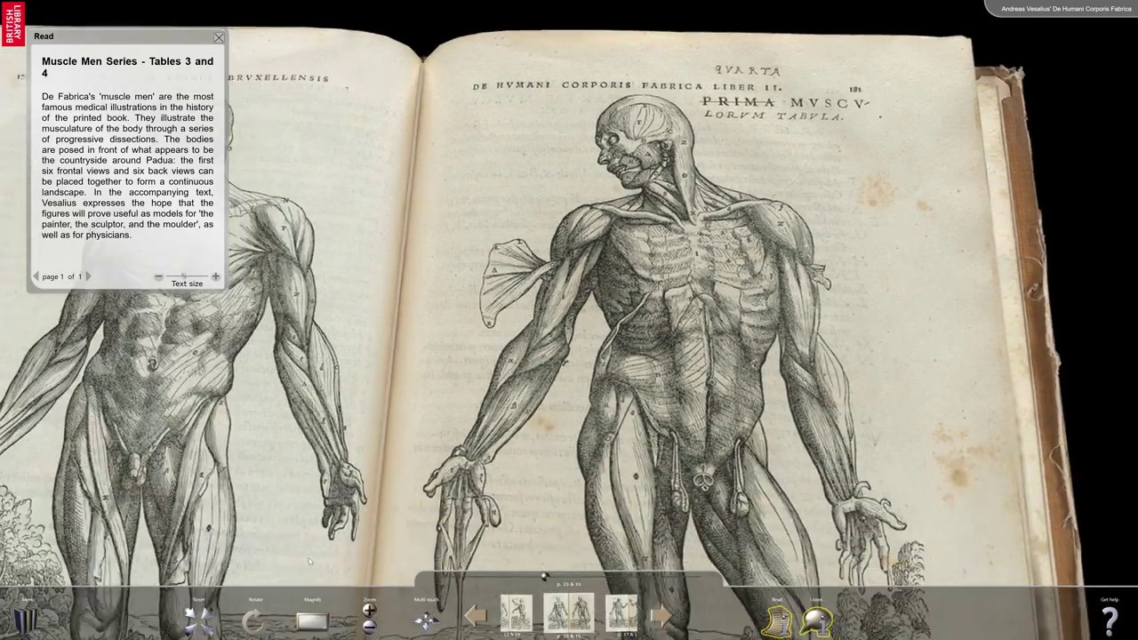 Andreas Vesalius - De Humani Corporis Fabrica, Turning the Pages ...