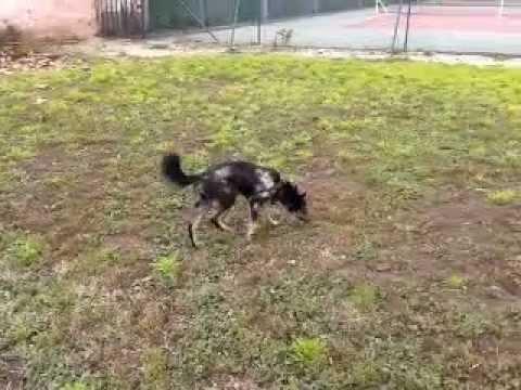 ramonika au parc