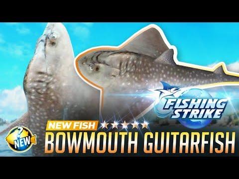 《釣魚大亨 Fishing Strike》 New Fish Bowmouth Guitarfish | Shark Ray | Mud Skate | Catch