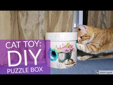 Cat Toy DIY - Puzzle Box Easy and CHEAP