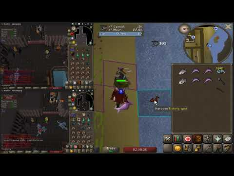 2t Fish + 2 Rds 140k Xp/h 3m Gp/h
