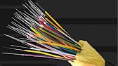 Услуги byfly предоставляются по авансовому механизму оплаты. Это значит, что доступ к сети интернет вы получаете при наличии положительного баланса на лицевом счете. Способы оплаты (для физических лиц) наличные, пластиковые карточки, электронные деньги и т. Д. • руп « белпочта» • банки и.