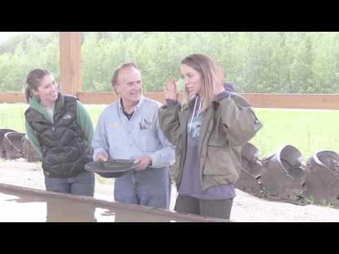 Gold Daughters Gold Panning with Travel Guide Publisher