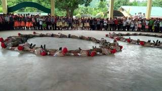 Video SNHS Bsp/performed the FANCY DRILL download MP3, 3GP, MP4, WEBM, AVI, FLV Desember 2017
