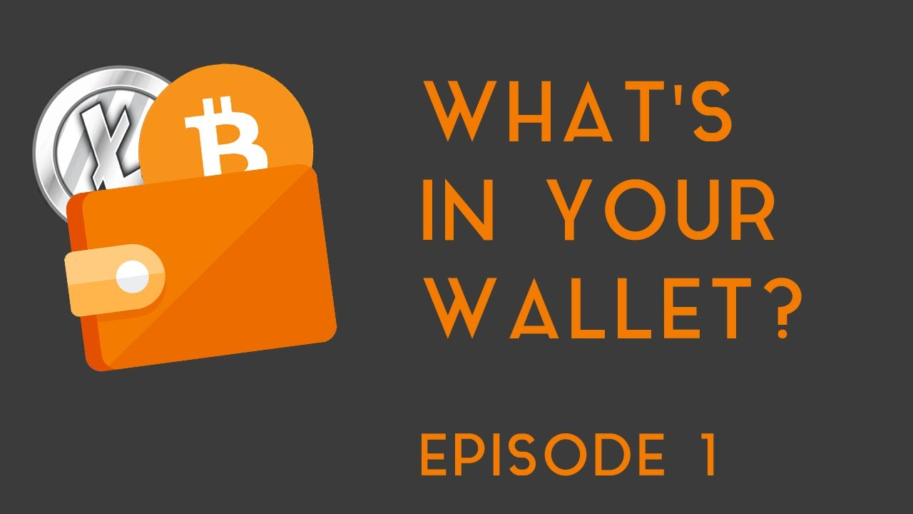 WHAT'S IN YOUR WALLET? | Ep 1 (Bitcoin, Litecoin, etc )