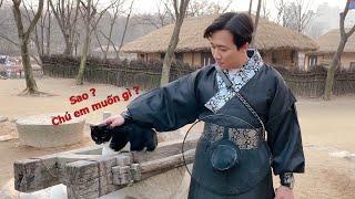 "(한) Bệnh ""Nghiện mèo"" của Hari và Trấn Thành không biến mất chỉ chuyển từ Việt Nam sang Hàn Quốc 중독병"
