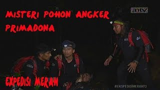 Misteri Pohon Angker Primadona Expedisi Merah Episode 73 25 Feb 18