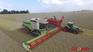 Żniwa pszenicy 2018\\ 6x Claas Lexion\\2x Claas Axion 830\\ 10x John Deere\\ Ursus// Świerkot