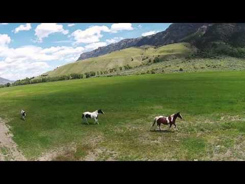 Flying H Ranch