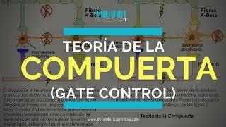 Teoría de la Compuerta o Puerta de Entrada (Gate control) | Miranda Fisioterapia BLOG