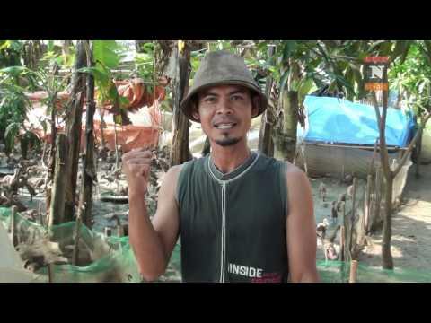 Indonesia birahi istri saat ngentot dengan selingkuhan - 4 6