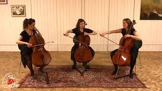 Robert Schumann - Wenn ich ein Vöglein wär'  (for CELLO TRIO by she plays cello)