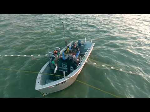 2016 Alaska Fishing
