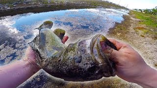 Slop Fishing ULTRA DIRTY WATER! (Drainage Ditch)