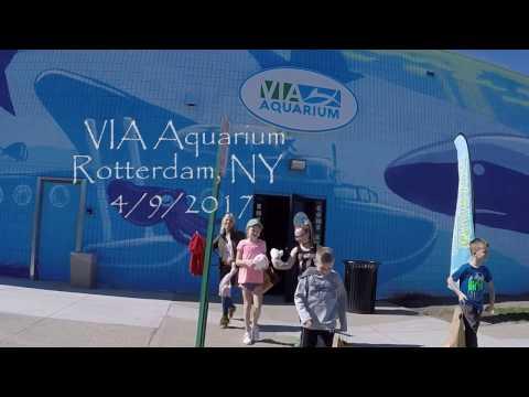 VIA Aquarium Rotterdam, NY