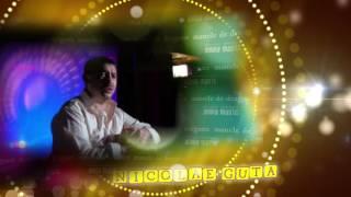 Repeat youtube video Nicolae Guta  -  Doar tu