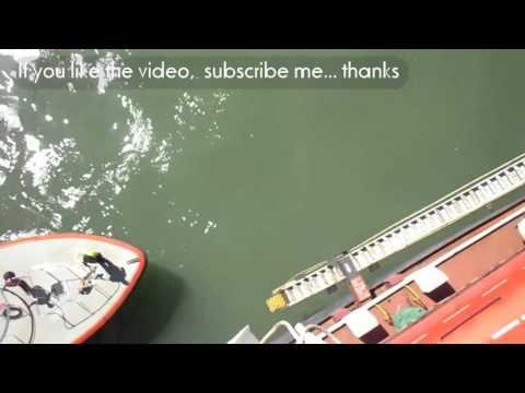australian pilot boarding cape size bulk carrier by pilot boat