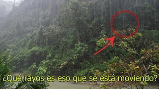 NO Creerás lo que Encontraron Dentro de esta Selva