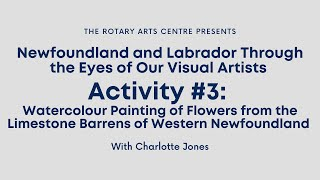 Newfoundland and Labrador Through the Eyes of our Visual Artists: Activity #3