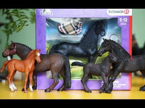 видео лошади шляйх квадрат новая история