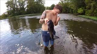 Channel Catfish Fever!!!